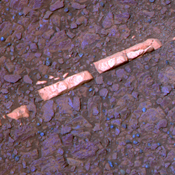 This false-color view of a mineral vein called 'Homestake' comes from the panoramic camera (Pancam) on NASA's Mars Exploration Rover Opportunity. The vein is about the width of a thumb and about 18 inches (45 centimeters) long.
