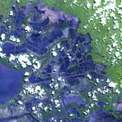 Acquired by NASA's Terra spacecraft, this image shows the eastern end of the Gulf of Fonseca, in Honduras, originally the site of extensive wetlands ecosystem, dominated by six species of mangroves.