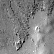 This image from NASA's 2001 Mars Odyssey spacecraft shows the margin between materials being sculpted by the wind into long, narrow hills and a surface not visibly affected by the wind.