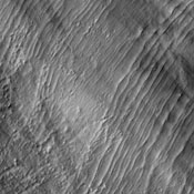 This image captured by NASA's 2001 Mars Odyssey spacecraft shows a series of low, concentric ridges is located to the west of Arsia Mons. The origin of these features is unknown, and there are no similar features at the other Tharsis volcanoes.