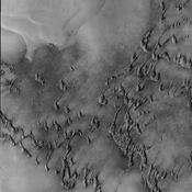 The dunes in this image from NASA's 2001 Mars Odyssey spacecraft are still partial covered in frost. They will get darker and darker as the frost is removed and the underlying dark material is completely exposed.