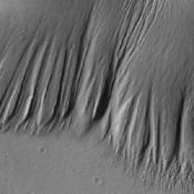 There is a large deposit of material on the floor of Nicholson Crater, as seen in this image from NASA's 2001 Mars Odyssey spacecraft. This pile of material appears to be undergoing erosion by the wind.