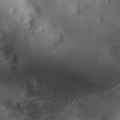 This image captured by NASA's 2001 Mars Odyssey spacecraft shows dunes in located on the floor of Lyot Crater.