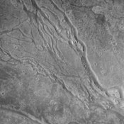 The channels in this image captured by NASA's 2001 Mars Odyssey spacecraft dissect the far western flank of the Elysium Mons highland.