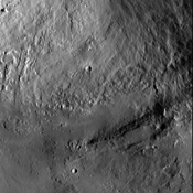 This image from NASA's Dawn spacecraft shows an interior wall and southern terrace of Marcia crater on Vesta. Relatively smooth material covers much of the terrace and has flowed downslope (toward the top of the image) through channels.