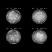 This panel of images shows the nearly spherical shape of Saturn's moon Phoebe, as derived from imaging obtained from NASA's Cassini spacecraft. Each image represents a 90-degree turn.