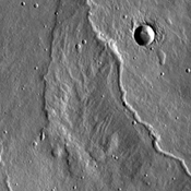 The channels in this image captured by NASA's 2001 Mars Odyssey spacecraft were most likely created by lava flows from Alba Mons, located in the northern Tharsis region.