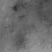 This image from NASA's 2001 Mars Odyssey spacecraft shows dark markings mar the surface of Mars' northern plains. While many may be the tracks of dust devils, some marks may be narrow fractures.