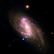 The spiral galaxy NGC 3627, located about 30 million light years from Earth as seen by four NASA telescopes; inset shows the central region, which contains a bright X-ray source that is likely powered by material falling onto a supermassive black hole.