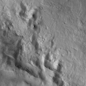 The small channel in this image from NASA's 2001 Mars Odyssey spacecraft is located on the floor of Newton Crater.