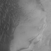 The sand sheet and dune forms in this image from NASA's Mars Odyssey spacecraft are located on the floor of Rabe Crater.