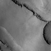 This image captured by NASA's 2001 Mars Odyssey spacecraft shows gullies on the northern face of one of the large depressions that mark the inner rim of Asimov Crater.