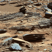 This image from the Mast Camera (Mastcam) on NASA's Mars rover Curiosity shows inclined layering known as cross-bedding in an outcrop called 'Shaler.'