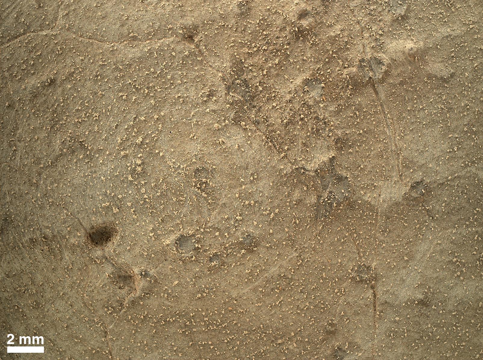 MAHLI-Nauaufnahme der gefegten Oberflaeche, Quelle: NASA/JPL-CalTech/MSSS