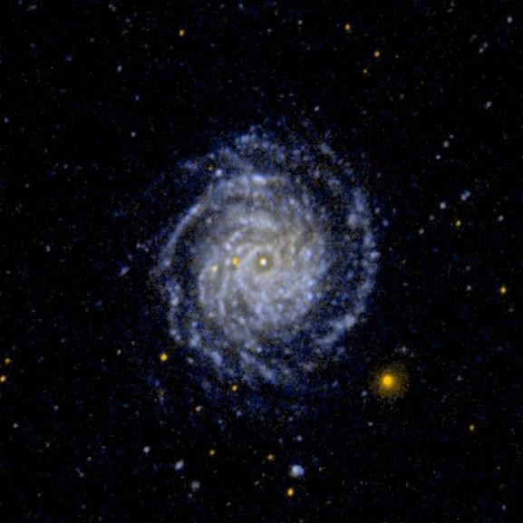 Large Face-on Spiral Galaxy NGC 3344