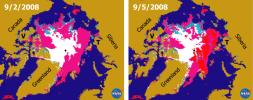 Recent State of Arctic Sea Ice