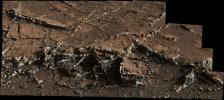 This March 18, 2015, view from the Mast Camera on NASA's Curiosity Mars rover shows a network of two-tone mineral veins at an area called 'Garden City' on lower Mount Sharp.