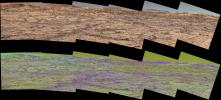 This pair of images from the Mast Camera on NASA's Curiosity rover illustrates how special filters are used to scout terrain ahead for variations in the local bedrock.