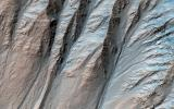 This image acquired on January 10, 2019 by NASA's Mars Reconnaissance Orbiter, shows large gullies on both the pole- and equator-facing slopes.