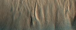 This image, acquired on December 13, 2019 by NASA's Mars Reconnaissance Orbiter, shows a cluster of gullies that appear modified or degraded.